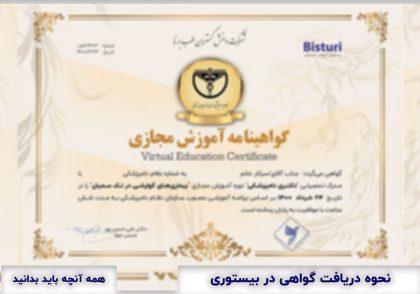 Certificate in The Bisturi