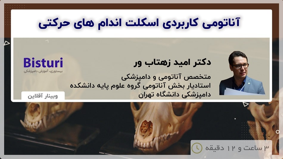 Applied Anatomy of the Skeletal System of Dogs and Cats And Radiographic Anatomy - DR Omid Zehtabvar
