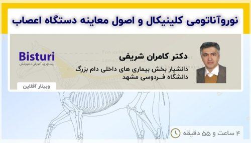 Clinical Neuroanatomy in Equine - DR Kamran Sharifi