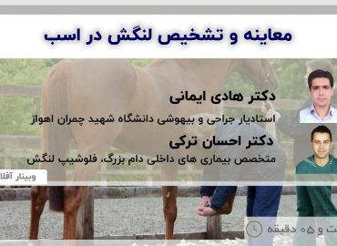 Examination and Diagnosis of Lameness in Horses - DR Hadi Imani - DR Ehsan Torki