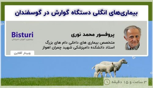 Gastrointestinal Parasitic Diseases in Sheep - DR Mohamad Nouri