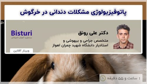 Pathophysiology of Dental Problems in Rabbits Prevention and Treatment - DR Ali Ronagh