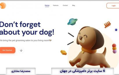 Top Veterinary Websites