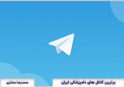 Top veterinary Telegram Channel in Iran