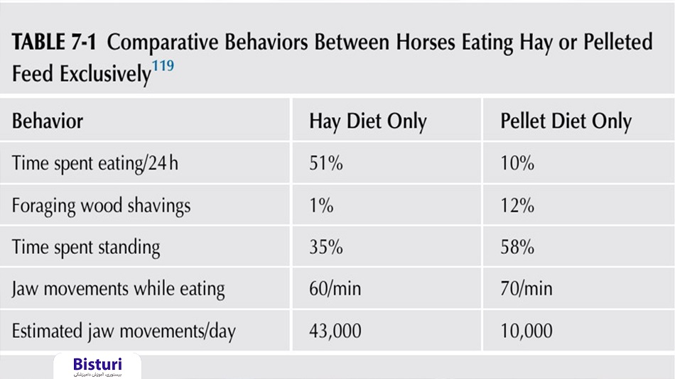 Common Behavioral Disorders in Horses Part 1 - Table