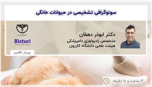 ultrasound in pets - offline